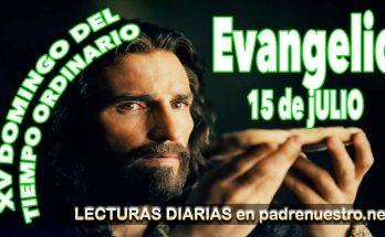 Evangelio del día Lecturas del Domingo XV Tiempo ordinario