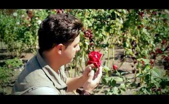 Johann Alvarez canta En busca del néctar