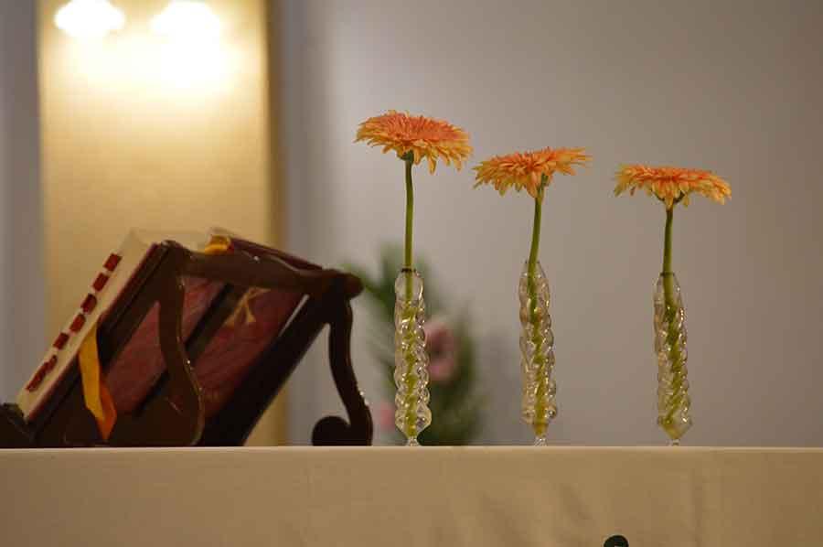 Flores y plantas mencionadas en la Biblia