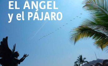El pájaro y el ángel