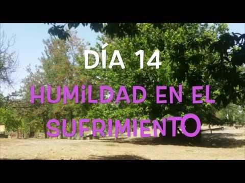 Camino de Cuaresma - Humildad en el sufrimiento