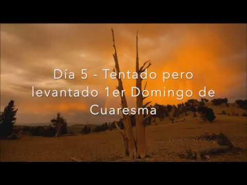 Camino de Cuaresma – Primer domingo de Cuaresma
