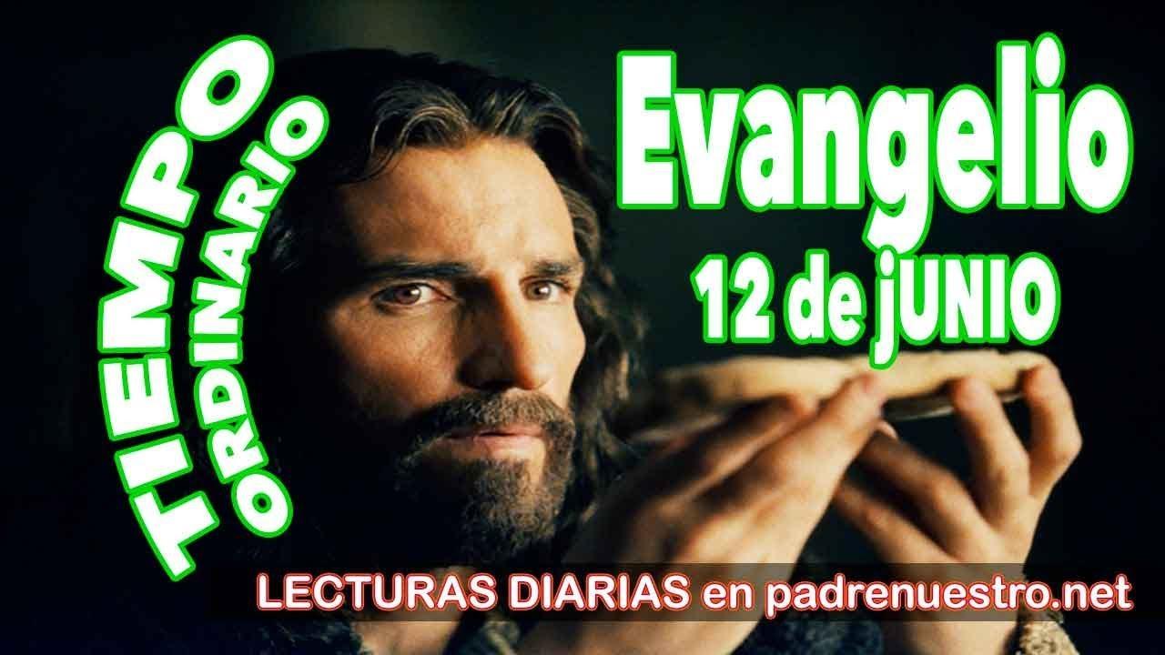 Evangelio del día 12 de junio