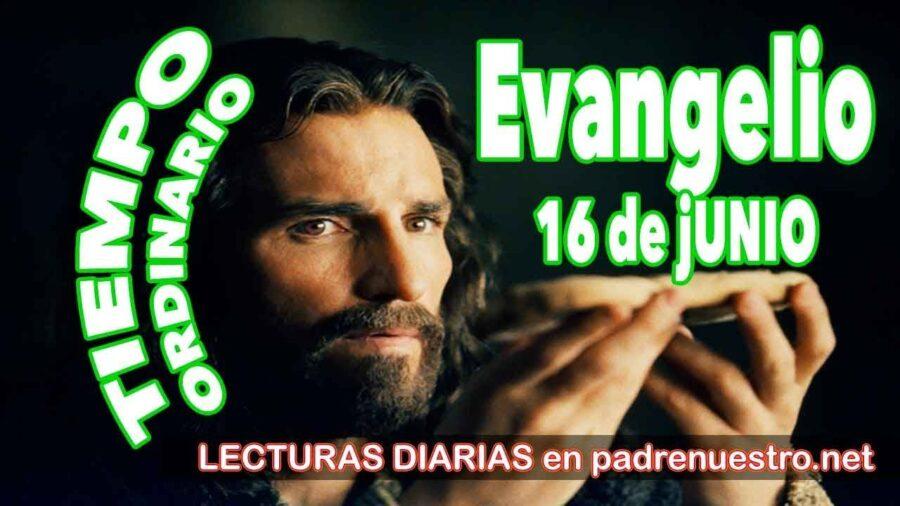 Evangelio del día 16 de Junio