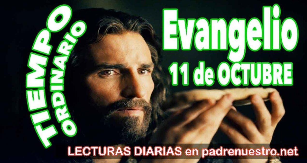 Evangelio del día 11 de octubre