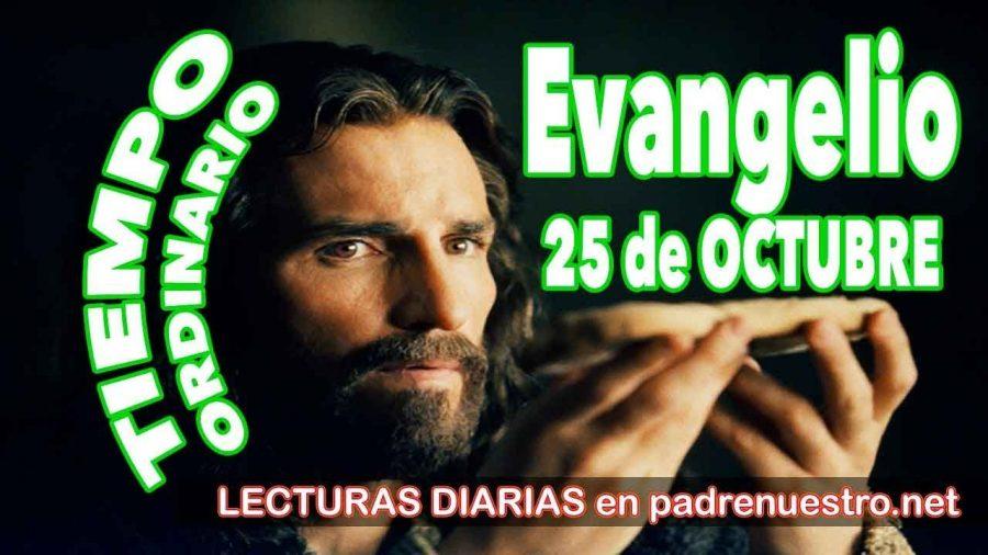 Evangelio del día 25 de octubre