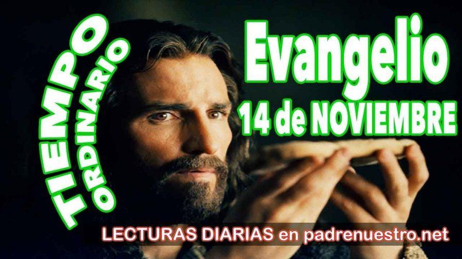 Evangelio del día 14 de noviembre