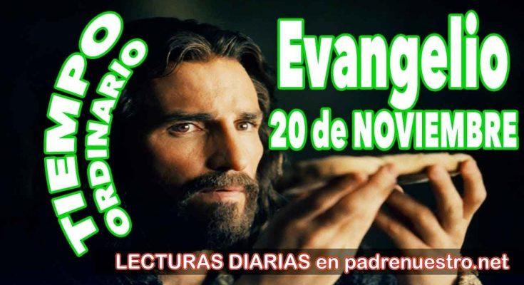 Evangelio del día 20 de noviembre