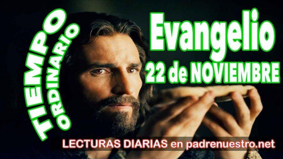 Evangelio del día 22 de noviembre