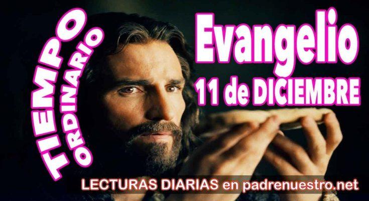 Evangelio del día 11 de diciembre