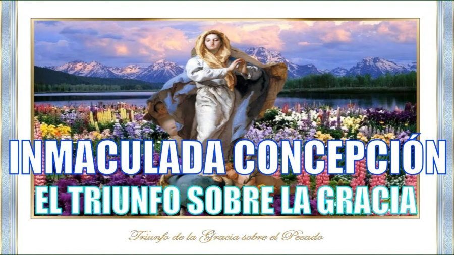 La Inmaculada, el Triunfo de la Gracía - Power point
