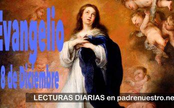 Solemnidad de la Inmaculada Concpeción de la Santísima Virgen