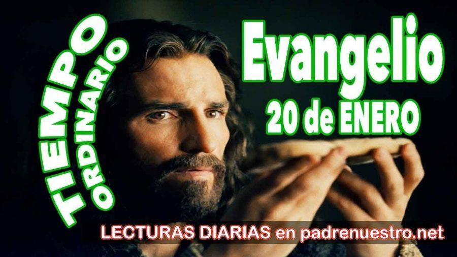 Evangelio del día 20 de enero