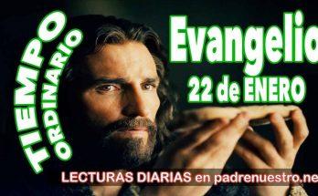 Evangelio del día 22 de enero