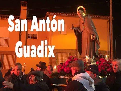 San Antón bendice a cientos de animales