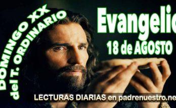 Reflexión del evangelio para el XX Domingo del Tiempo ordinario