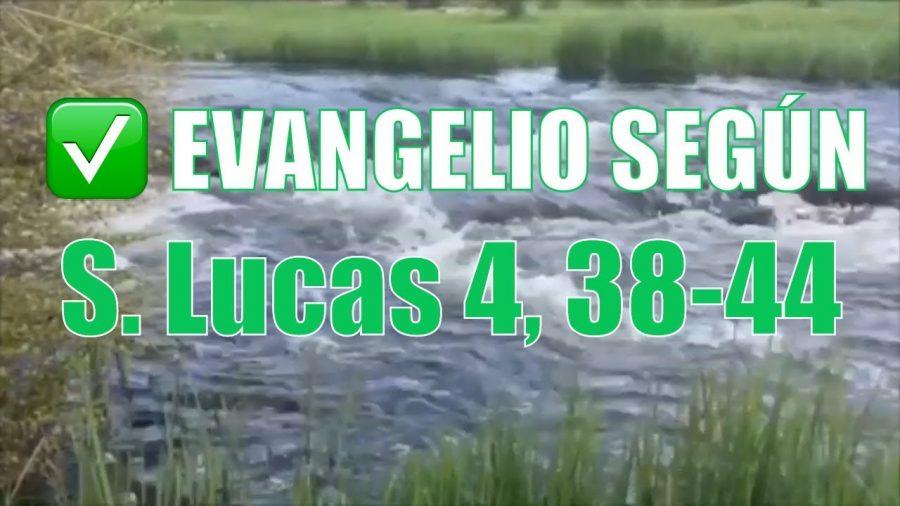 Evangelio según San Lucas 4,38-44.