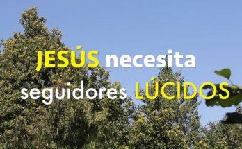 JESÚS necesita seguidores lúcidos | Reflexiones cristianas