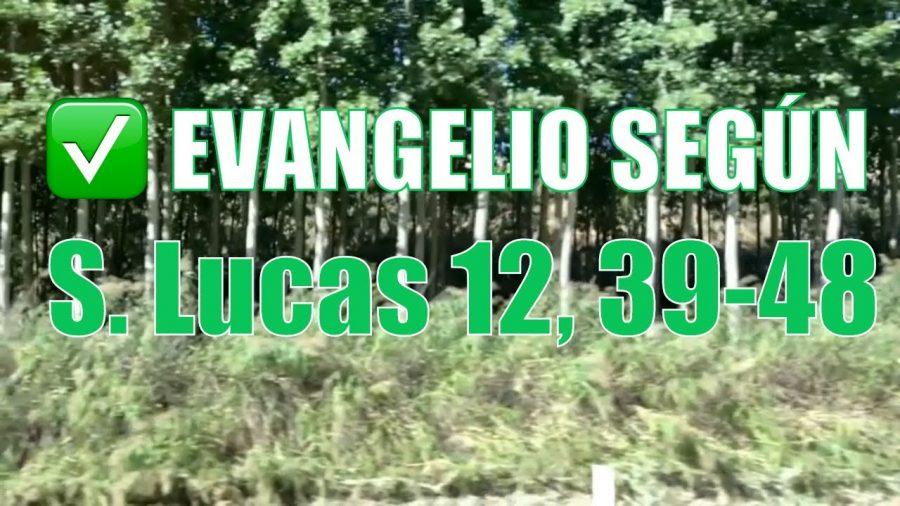 Evangelio según San Lucas 12, 39-48