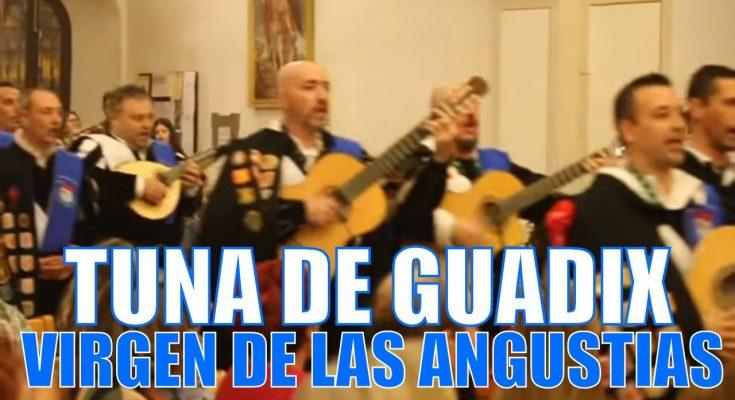 La tuna le canta a la Virgen