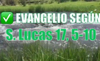 Evangelio según San Lucas 17. 5-10