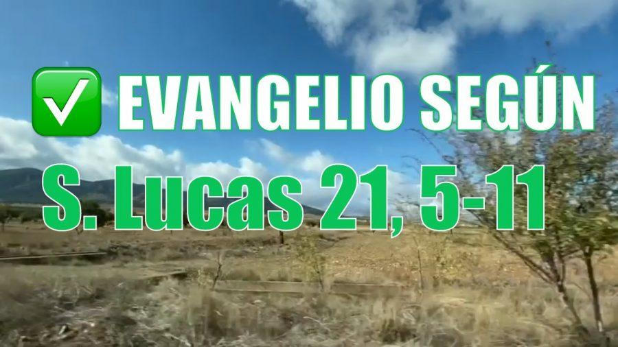 Evangelio según San Lucas 21,5-11.