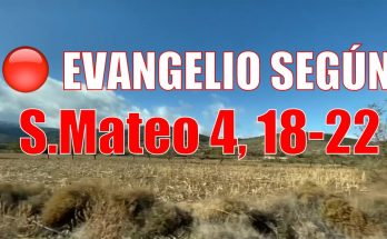 Evangelio según San Mateo 4,18-22