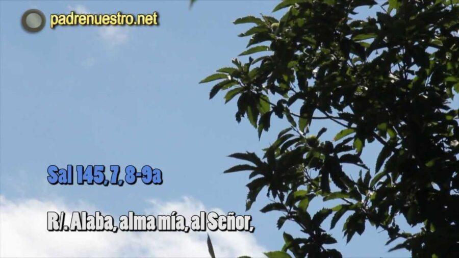 [Vídeo] Salmo 145 - Alaba, alma mía, al Señor