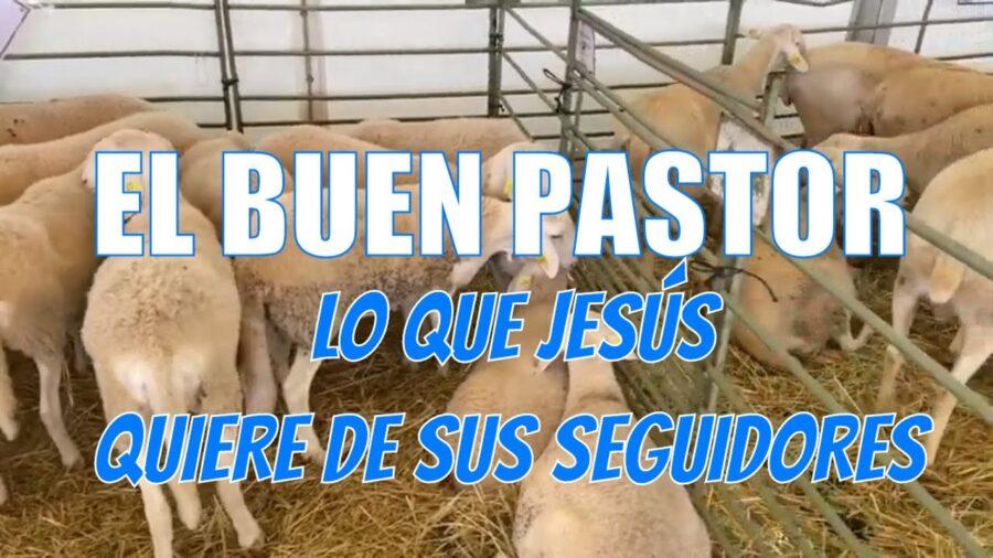 El BUEN PASTOR | Lo que JESÚS quiere de nosotros