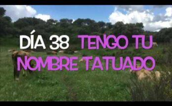 Camino de Cuaresma con el Padre Guillermo Serra   Tengo tu nombre tatuado
