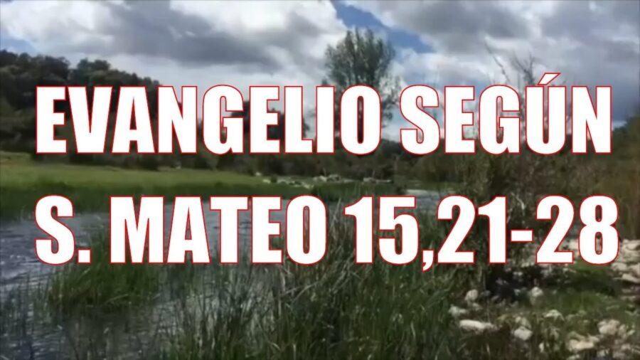 Evangelio según San Mateo 15, 21-28
