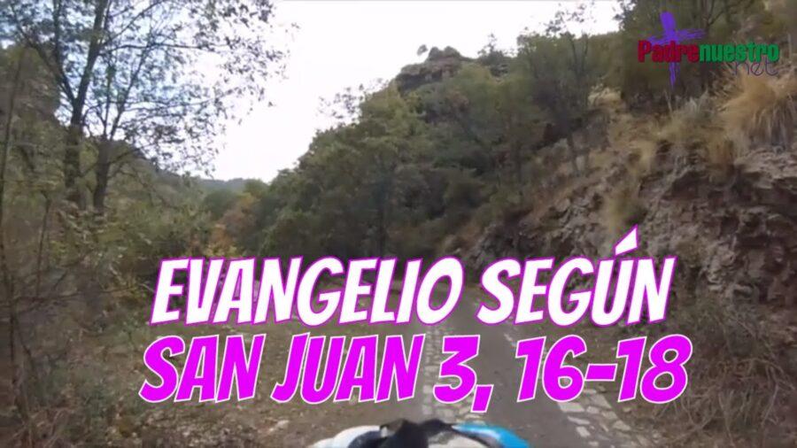Evangelio según San Juan 3,16-18
