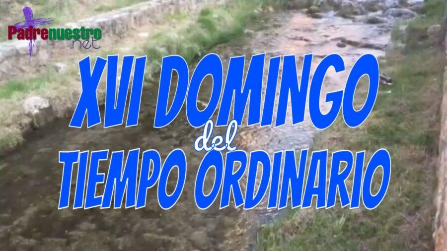 Domingo XVI del Tiempo ordinario