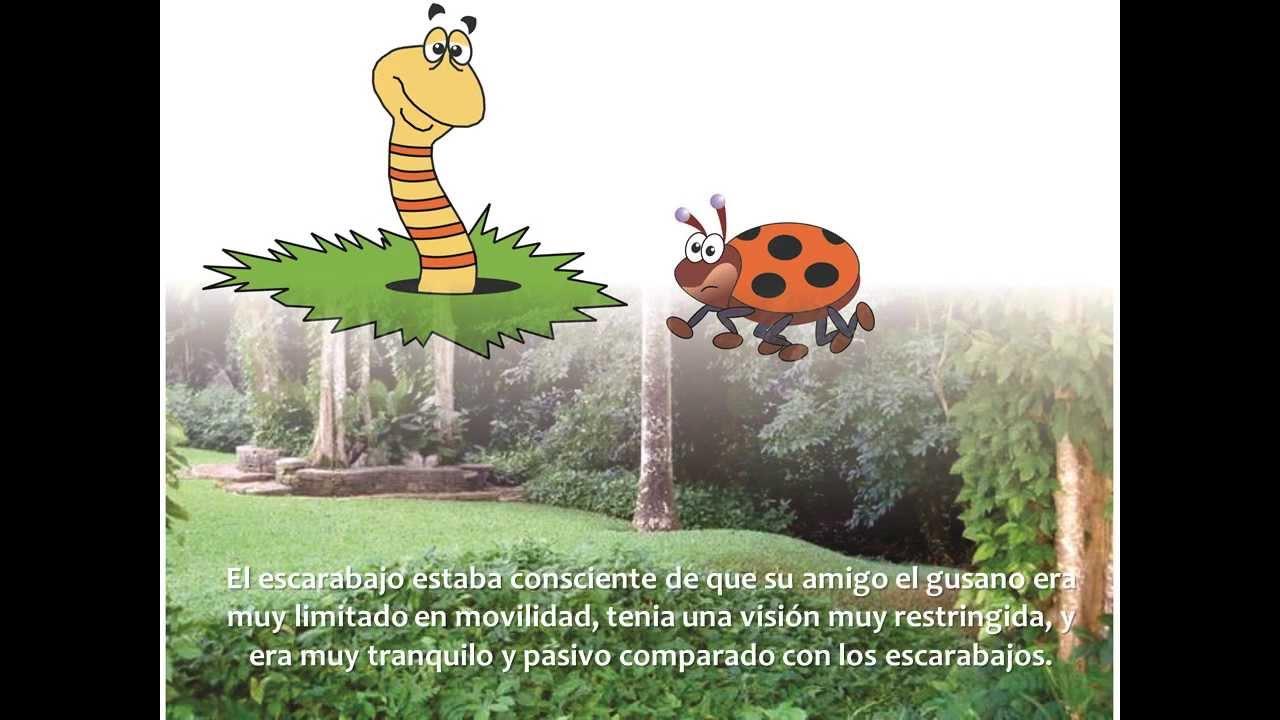 El Gusano y el Escarabajo - Cuentos con valores