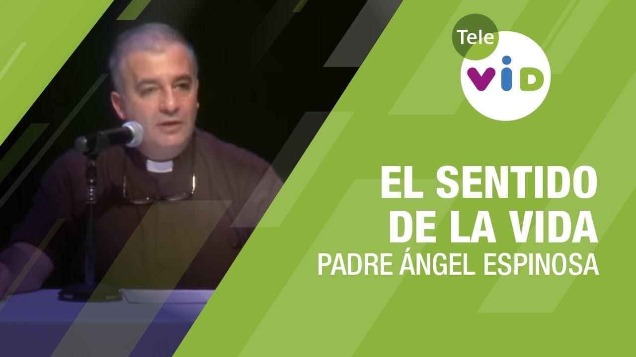 El sentido de la vida por Padre Ángel Espinosa [Vídeo]