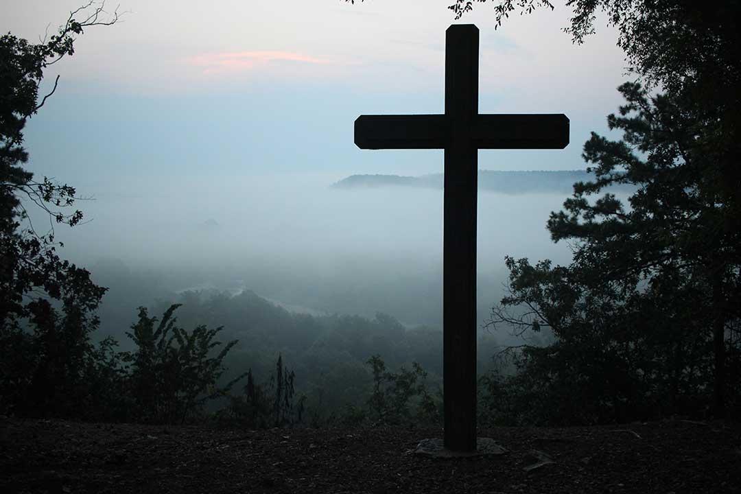 Viva la cruz