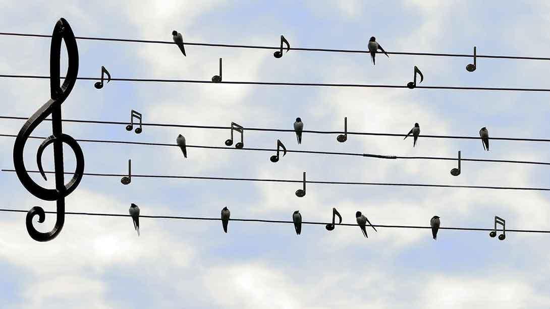 Canten al Señor