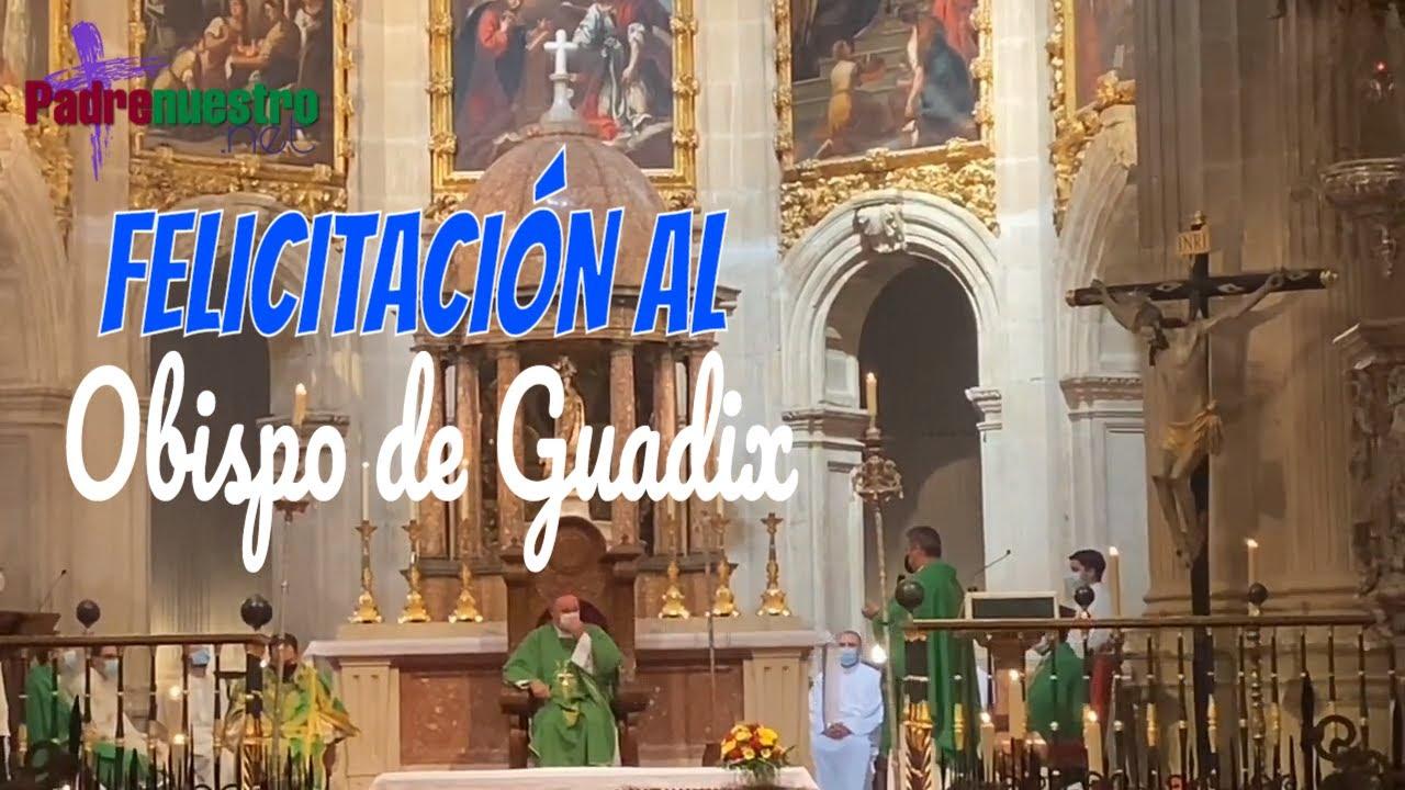 Felicitación al Obispo de Guadix el día de su onomástica