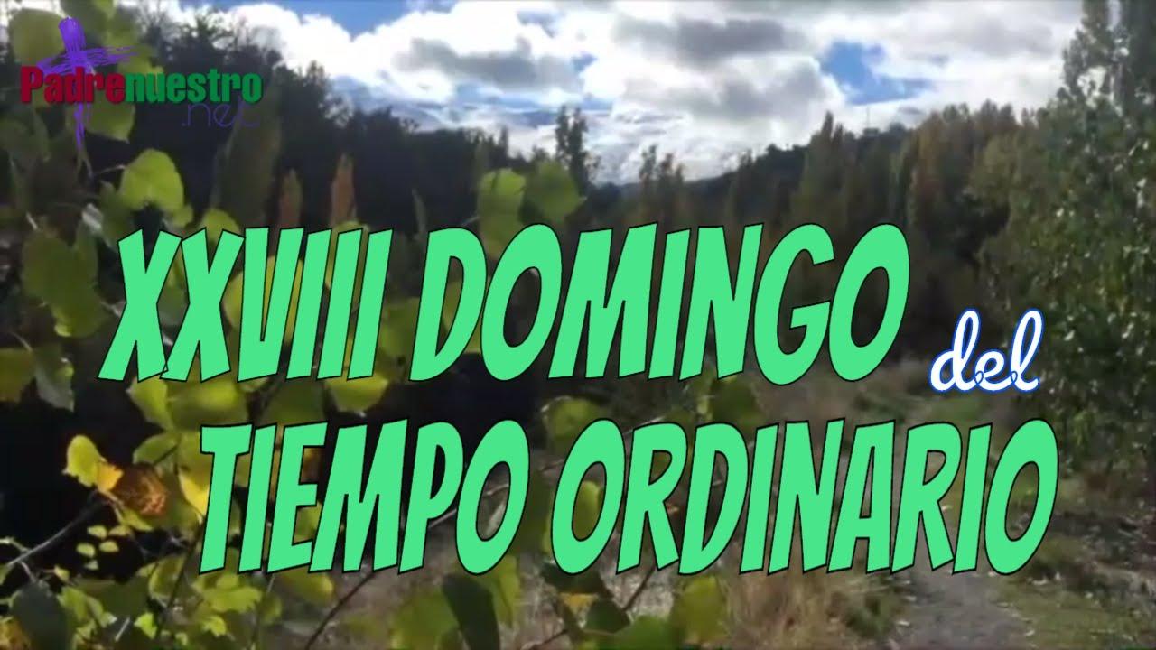 XXVIII Domingo del Tiempo ordinario - Ciclo A