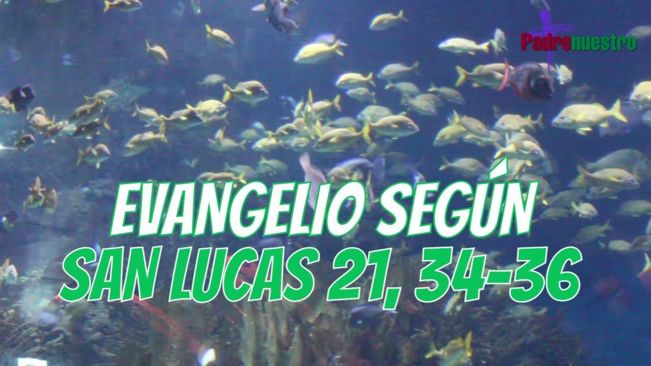 Lucas 21, 34-36