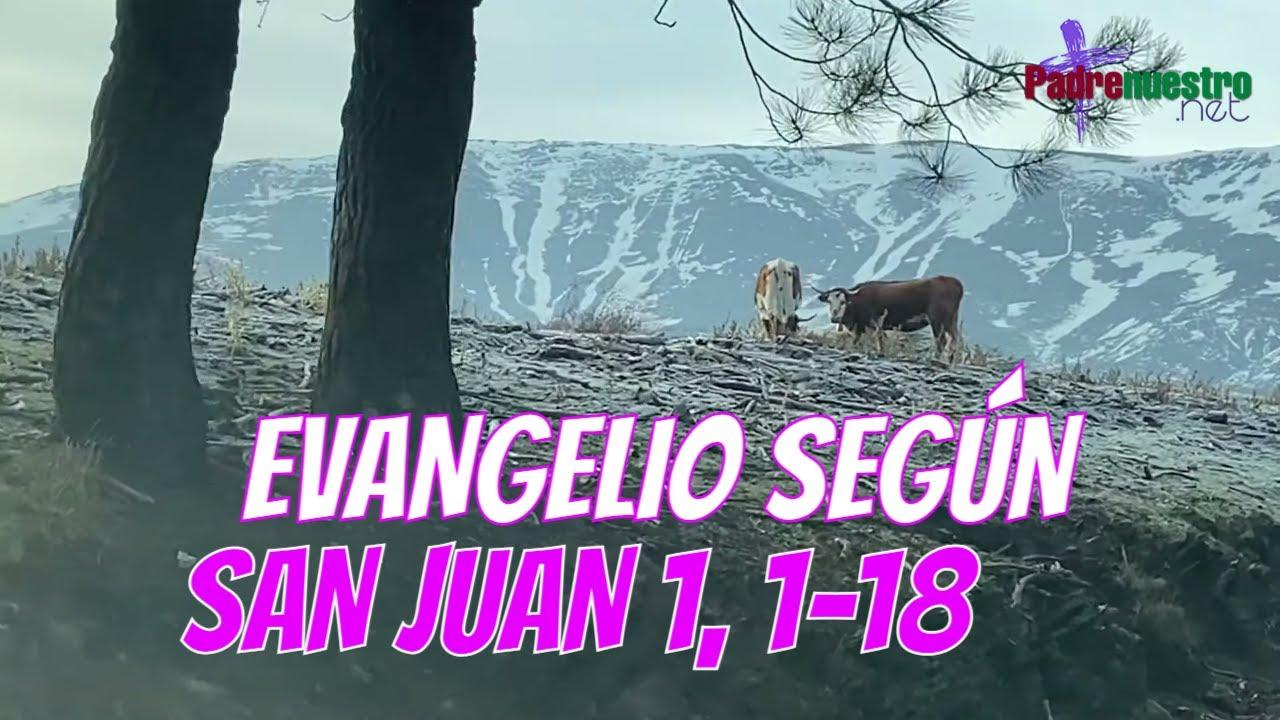 Juan 1 1-18