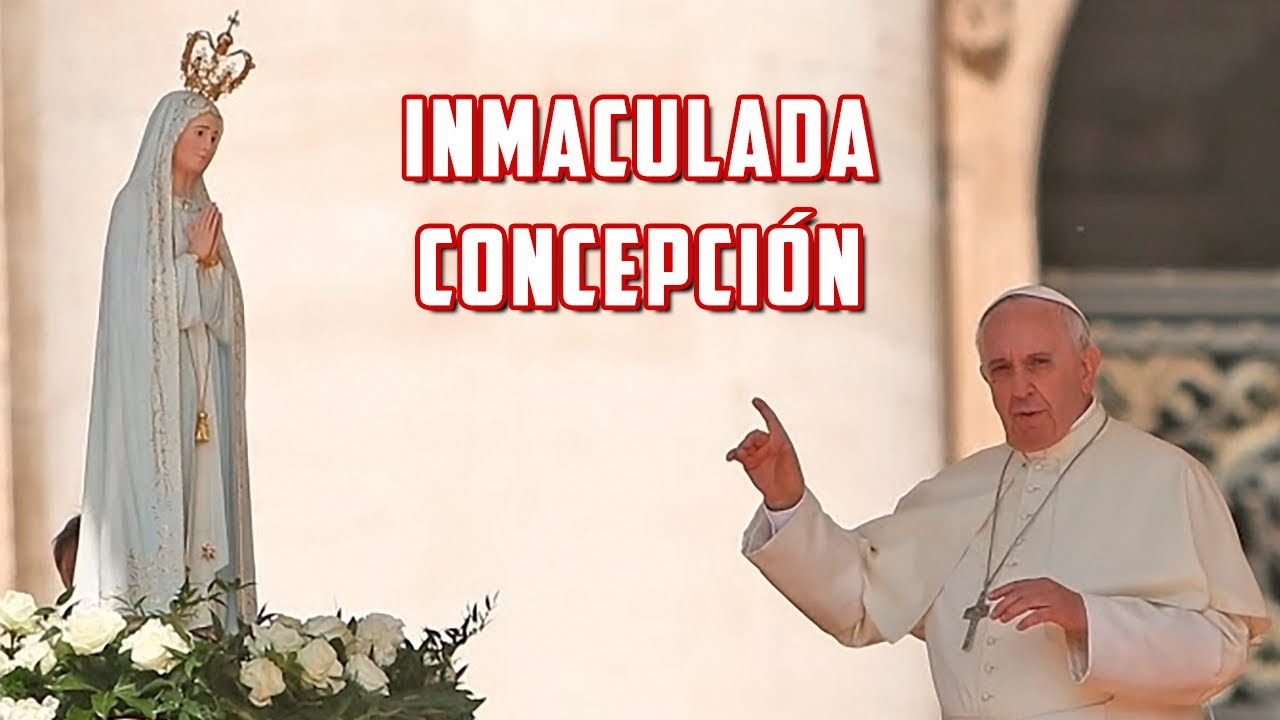 Palabras del Papa Francisco en la festividad de la Inmaculada Concepción