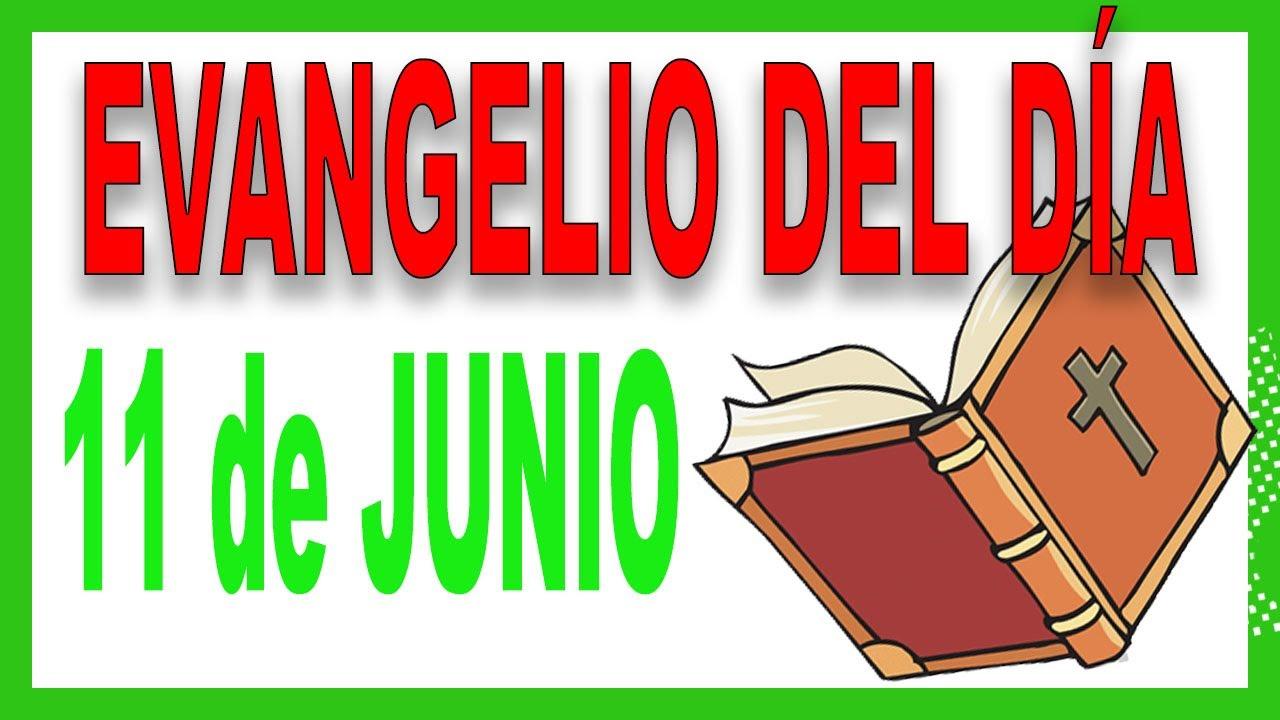 Evangelio del día 11 de Junio con el Padre Guillermo Serra