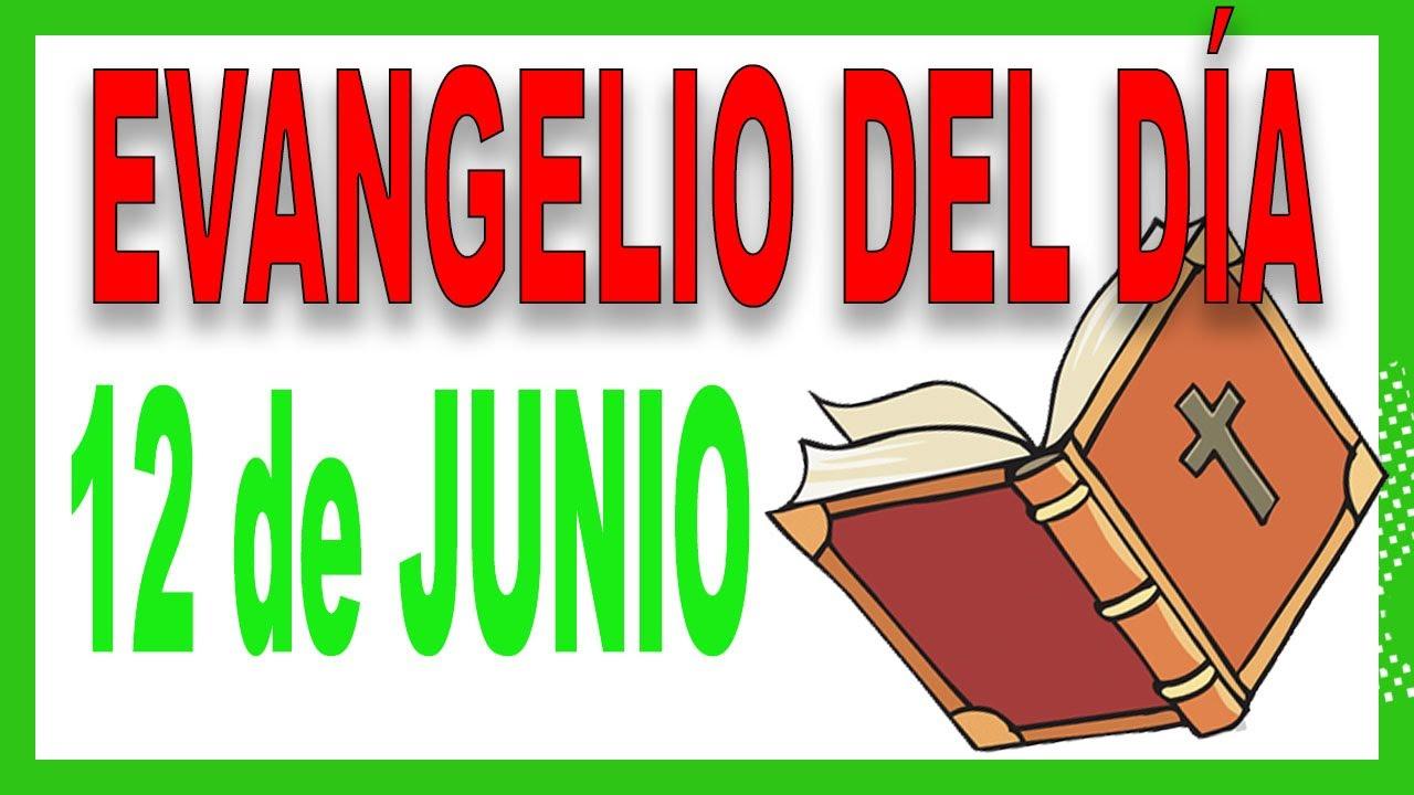 Evangelio del día 12 de Junio con el Padre Guillermo Serra