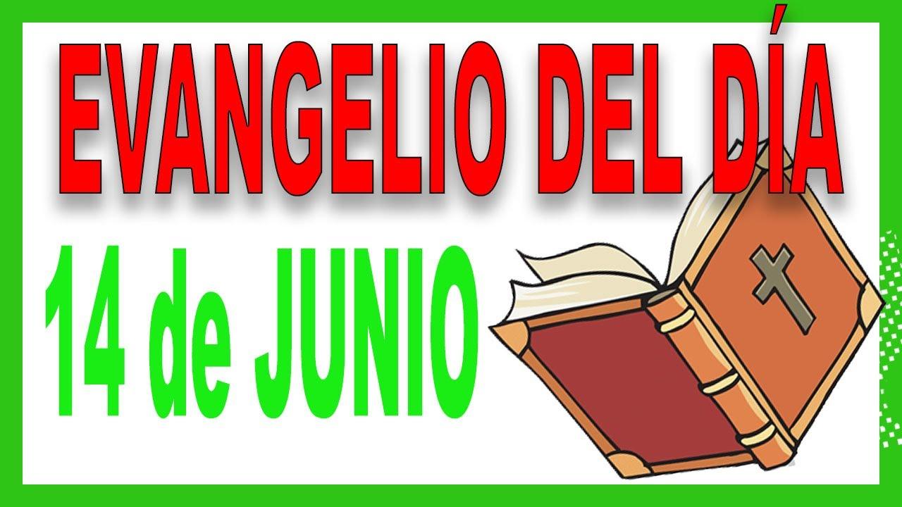 Evangelio del día 14 de Junio con el Padre Guillermo Serra