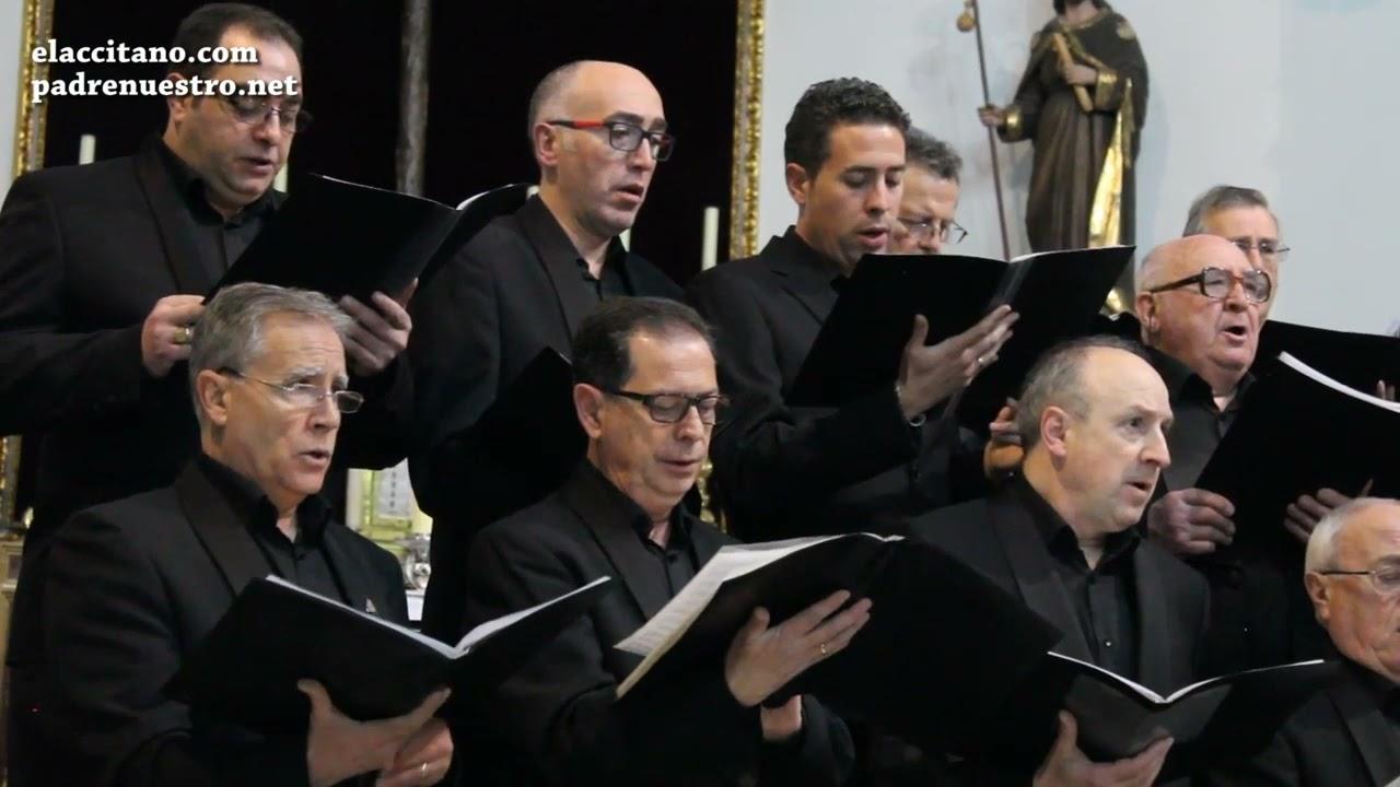 Señor me cansa la vida letra de Antonio Machado interpretada por Accichorus y el Coro María Briz