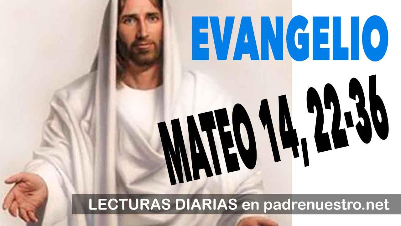 Evangelio según San MATEO 14, 22-36